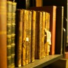 Library Shelves by Binary Ape via Flickr (Creative Commons license)